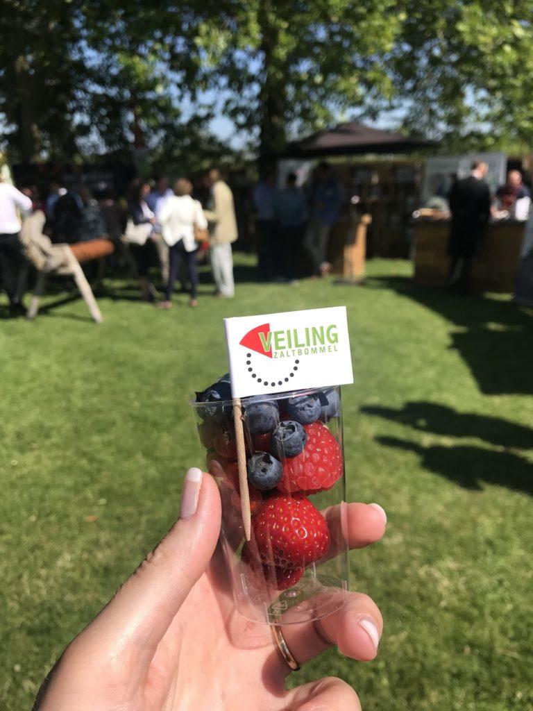Genieten van fruit uit de Betuwe_Nationale Kersenparty 2019